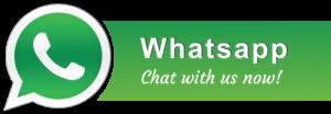 WhatsApp +65 96584362